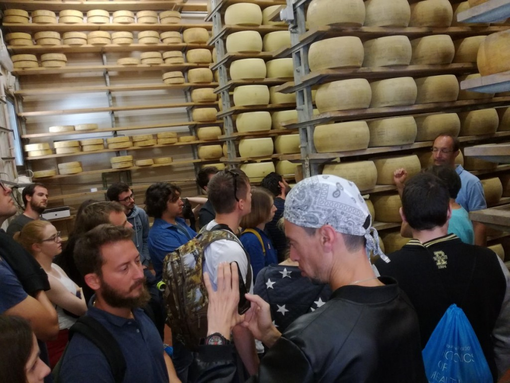 Primiero Cheese tour - Poseidon Summer School 2017-min